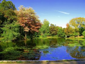 Prospect Park - Things to do in Park Slope